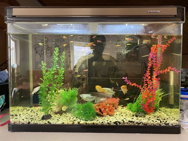 Акваріум 150л аквариум