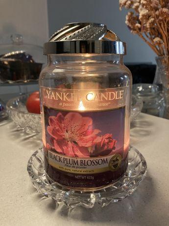 Świeca Yankee Candle Black Plum Blossom Unikat