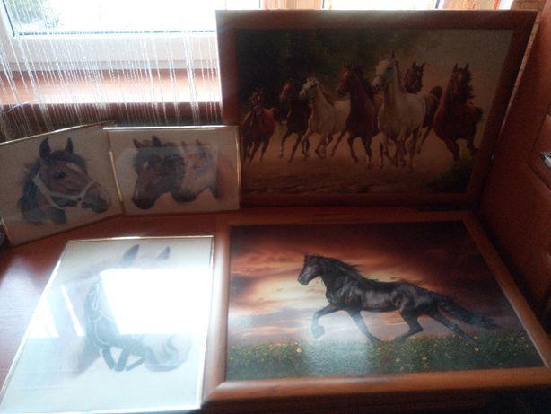 Sprzedam - obrazy w konie