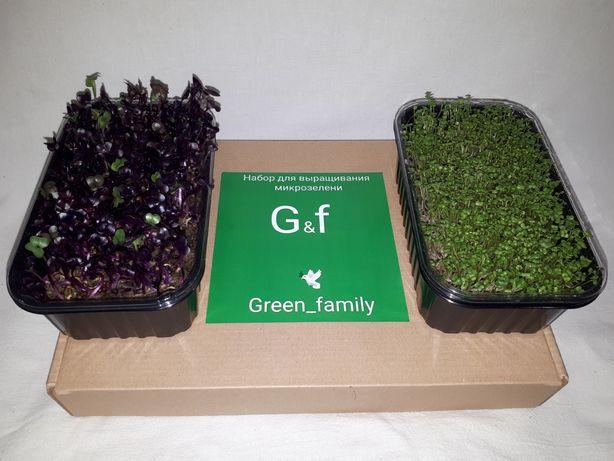 Наборы для выращивания микрозелени/отличный подарок на 8 марта