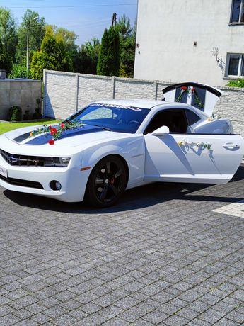 Camaro RS Samochód do ślub