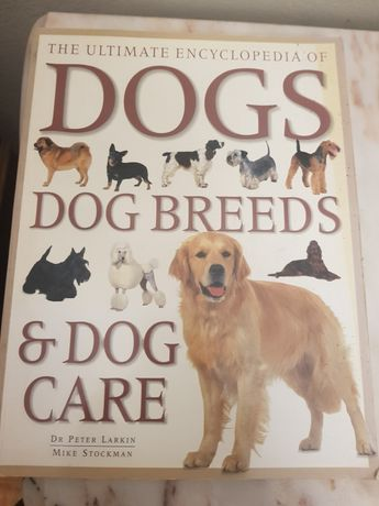 Cães   Dogs breeds & dogs care