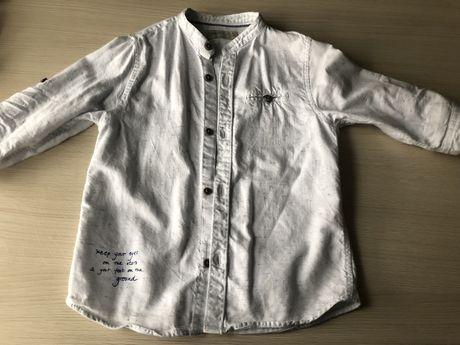 Koszula clopieca 116