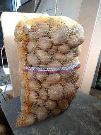 Ziemniaki Vineta, bardzo smaczne. Prosto od rolnika CENA DO NEGOCJACJI