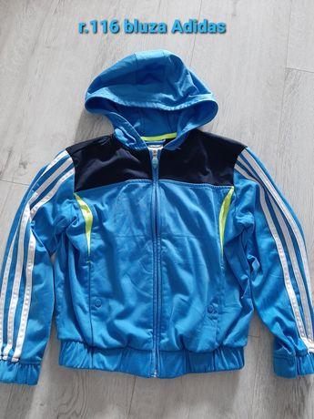 Bluza Adidas R.116
