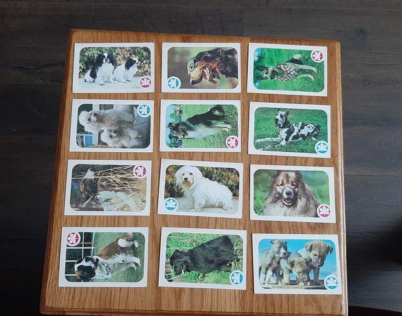 Календарики ссср,  Календарики собаки, Календарики на каждый месяц1987