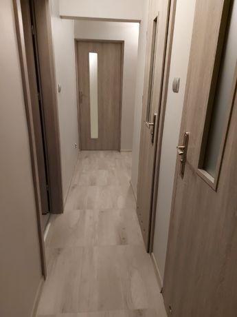 Wynajmę mieszkanie 2 pokoje + kuchnia + łazienka ( Łowicz )