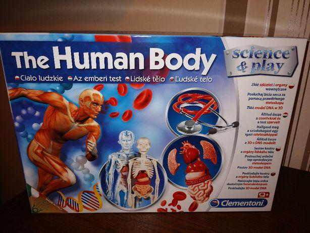 """zabawka """"Ciało Ludzkie"""""""
