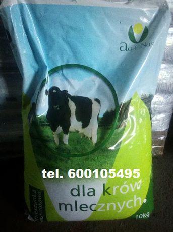 Sprzedaż nasion traw pastewnych, nasiona traw dla krów, mieszanka traw