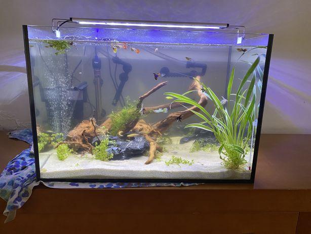 Aquario 94 litros