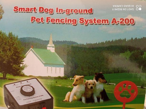Pastuch dla psów-niewidzialne ogrodzenie