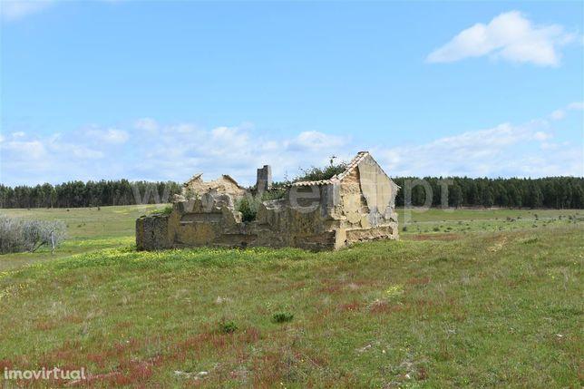 Quinta 17 ha com ruína, Porto Covo