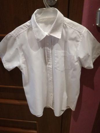 Koszula biła.