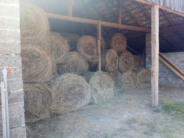 siano - bele 120/120, rok 2020 przechowywane w stodole