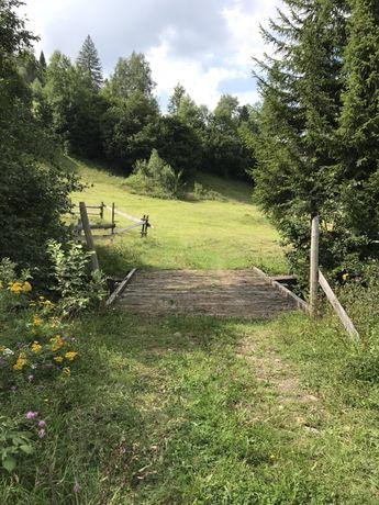 Карпати Сколе 1 гектар під Будівництво
