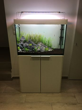 Aquario + movel + iluminaria twinstar 600s