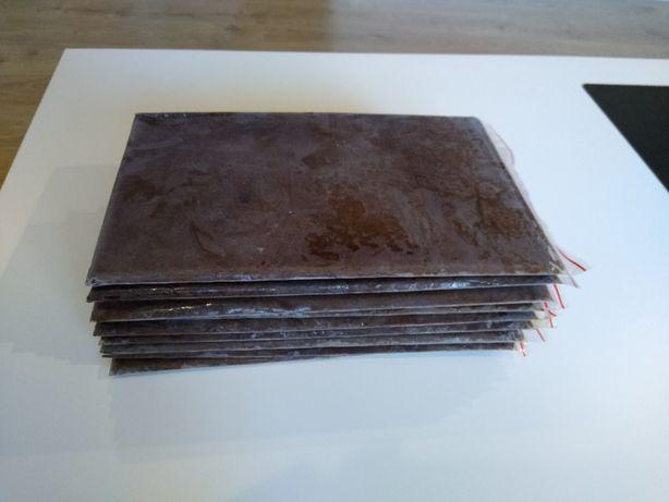 Artemia / Solowiec mrożonki tafle 500g