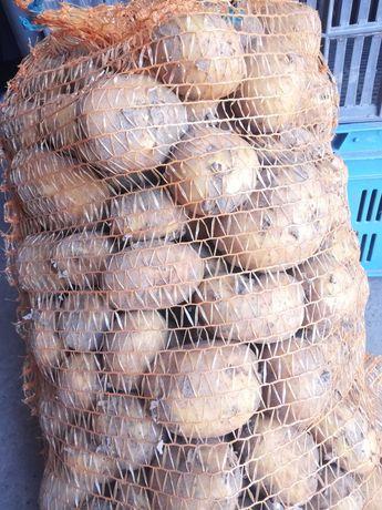 Ziemniaki młode denar