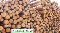 Stemple drewniane nowe