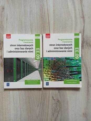 Technik informatyk EE.09 WSiP cz. 2 3 ee09 zestaw podręcznik
