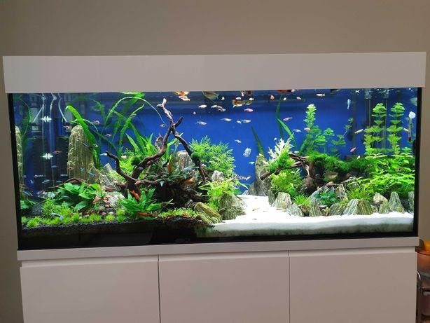 Akwarium zestaw 450l z CO2