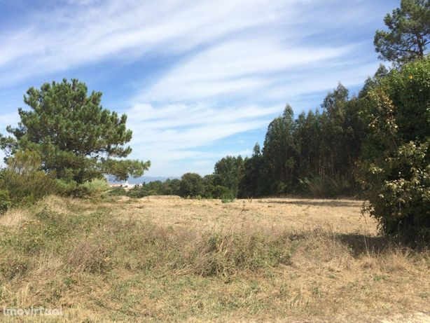 Terreno rústico com 8350 m2 na Cela, Alcobaça