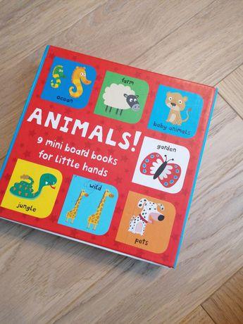 Mini książeczki po angielsku zwierzątka nauka,