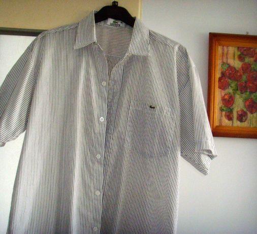 koszula męska lacoste rozm.XL