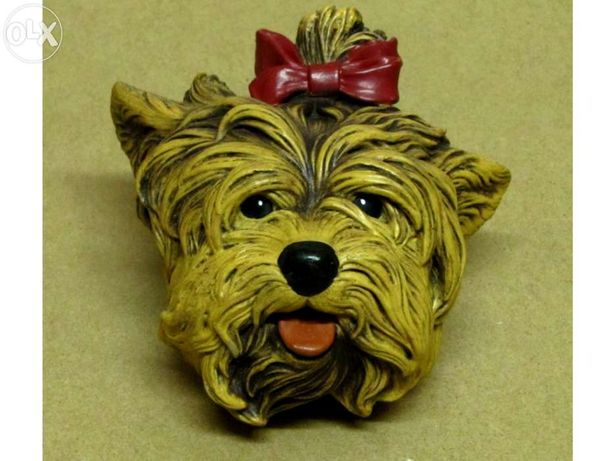 Bossons Yorkshire Terrier Dog