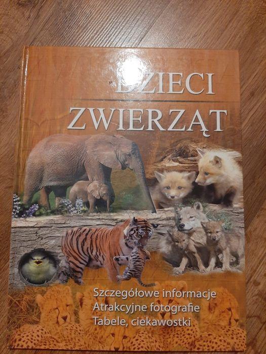 Dzieci zwierząt . Bolszewo - image 1