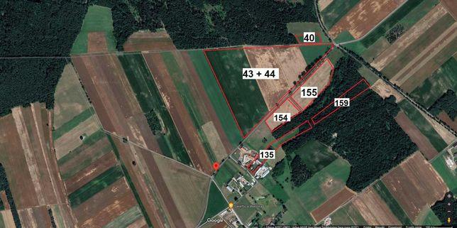 Gospodarstwo Rolne (44HA) Budynki, Grunty Orne, Lasy