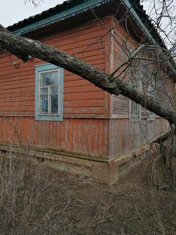 Недорого продается дом в селе и 60 соток приватизированной земли