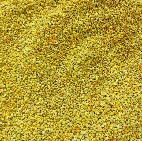 Pyłek Pszczeli Prosto z Pasieki Miód Kwiatowy wielkowiatwy lipowy