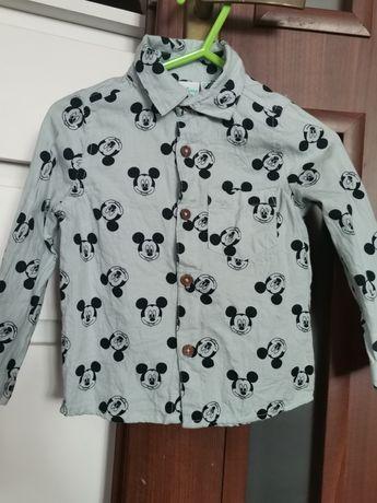 Koszule dla chłopca