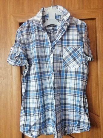Koszule męskie z krutkim