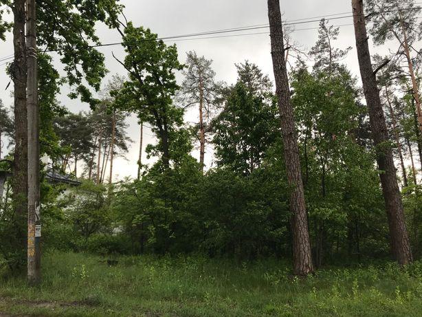 Продам участок 20 соток в лесной Буче