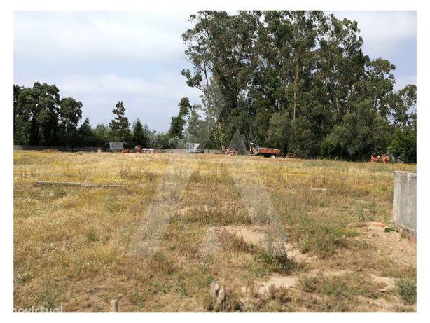 Terreno para Construção em Cacia