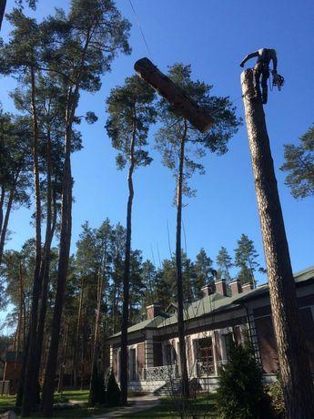 Удаление Обрезка Спил деревьев
