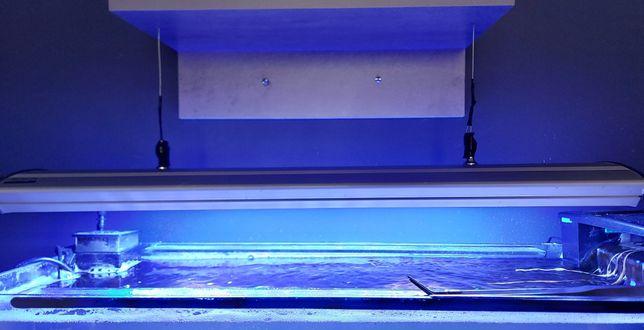 Lampa 156W akwarium morskie