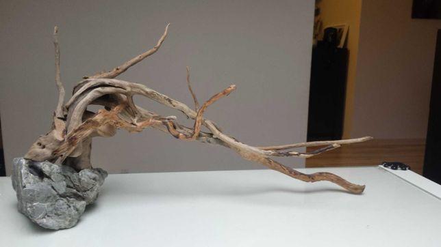 Bonsai korzeń drewno aquascape