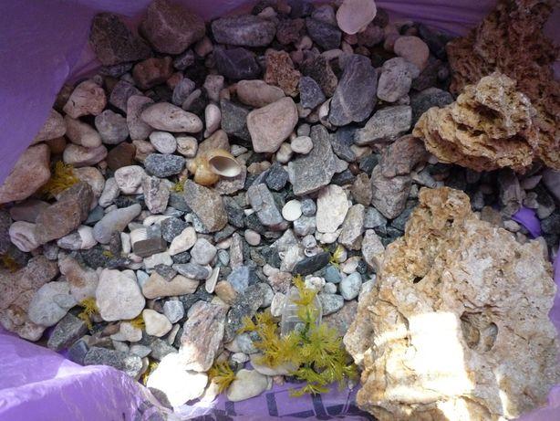продам камни на дно аквариума