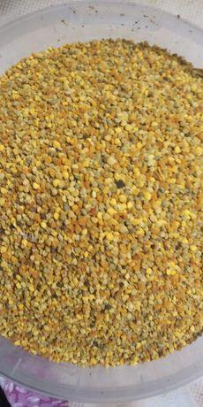 Цветочная пыльца 100 грн.кг.