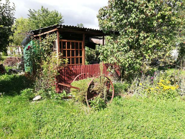 Ogródek działkowy Legnica