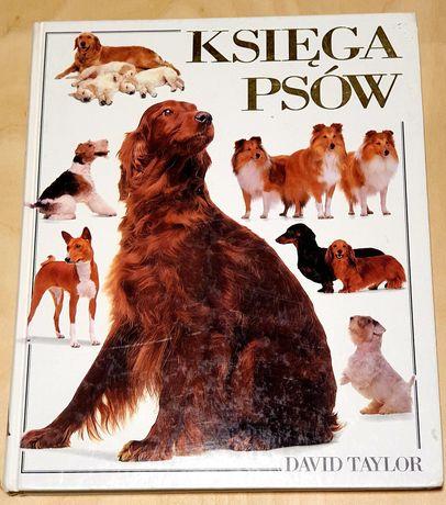 Księga psów David Taylor
