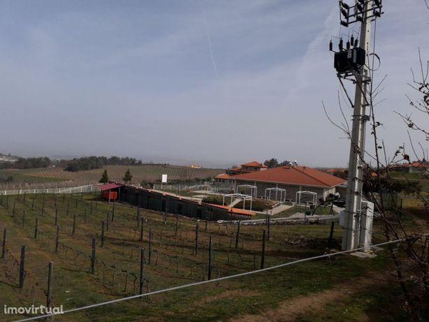 Terreno Com Viabilidade De Construção( Perto Da  Quinta Da  Barroca)