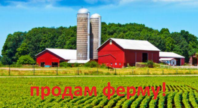 2467645 N3 Продам действующую ферму ! район Харьковский