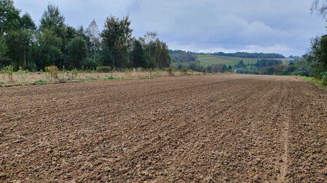 Działka rolna 1,14 h.
