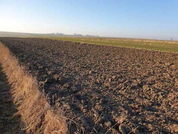 Wezme w dzierżawę grunty  rolne Bardzo dobre warunki współpracy