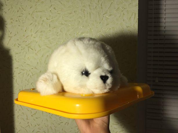 беленький тюлень