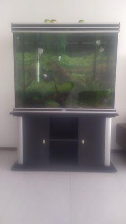 Aquário Aquatlantis 400 Litros completo ( Panorâmico )